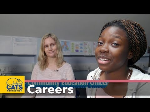 Meet a Behaviour Manager and an Education Officer – Careers with cats, episode four