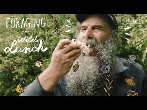 Foraging a Wild Lunch | The Salt | NPR