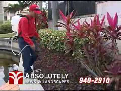 Absolutely Lawn & Landscapes