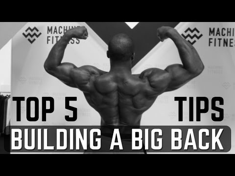Top 5 Tips For Building a Bigger Back