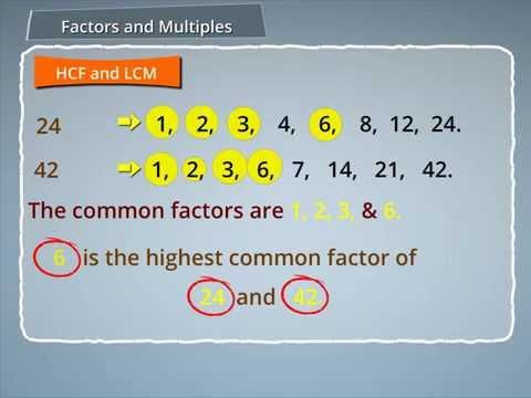 HCF and LMC- Prime Factorization method, Long Division Method,