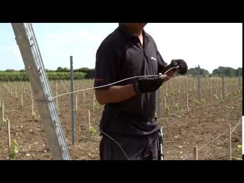 Vineyard trellis repair with gripplle