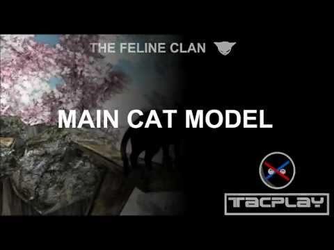 The Feline Clan: Main Cat Model