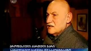 პროფესიული ქართული ჯარი