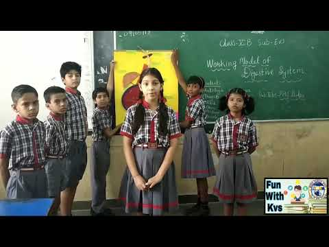 Working Model of digestive system || KV School || Learning is fun || Fun with kvs ||