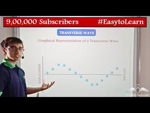 Longitudinal & Transverse Waves