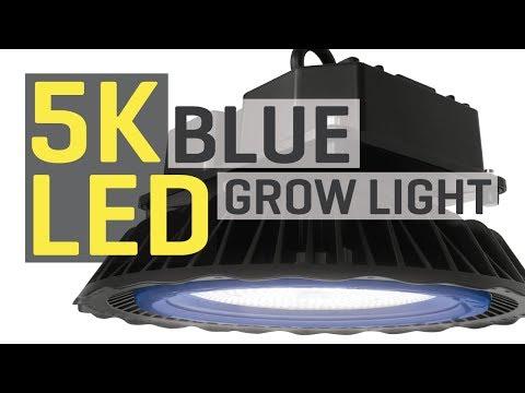 New 5000K Blue LED Grow Light