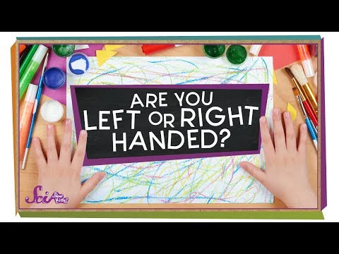 Which Hand Is Stronger? | Biology for Kids