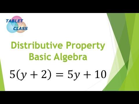 The Distributive Property (Learn Basic Algebra)