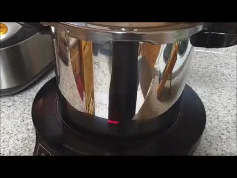 Testing the Temperature of a Pressure Cooker Compared to the Pressure Gauge.
