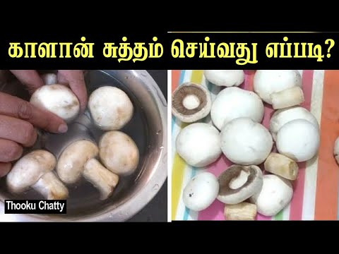 How to Wash Mushroom before Cooking And How To Cut A Mushroom Quick Cooking Tip Tamil