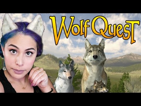 I HAVE NO GAME - Wolf Quest