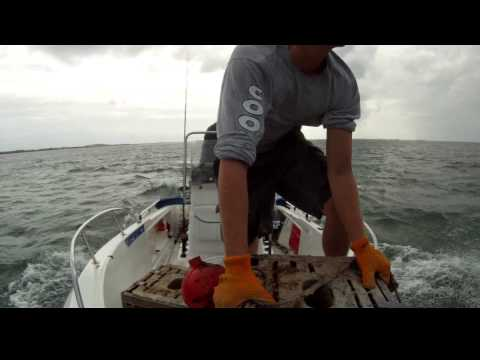 Moving Stone Crab pots in Key West