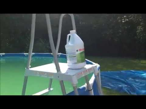 Green Algae Pool Water Treatment Before and After