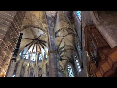 Barcelona Cathedral Inside 2018