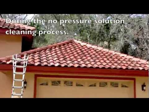 East Lake woodlands Oldsmar, FL   34677   Tile roof cleaning