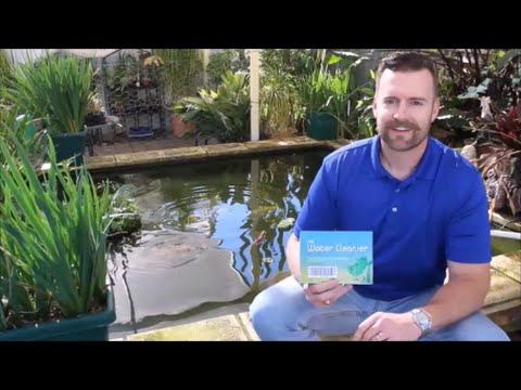 Pond Algae Control with The Water Cleanser