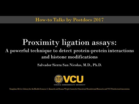 Proximity Ligation Assays: Detect protein-protein interactions and histone modifications