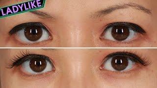 Women Wear False Eyelashes For A Day • Ladylike