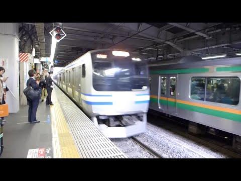 Tokyo, Japan - Yokosuka Line Train at Shinagawa Station HD (2015)