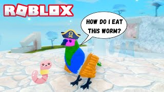 Feather Family Roblox Games For Free Roblox Feather Family Eggs Hatching