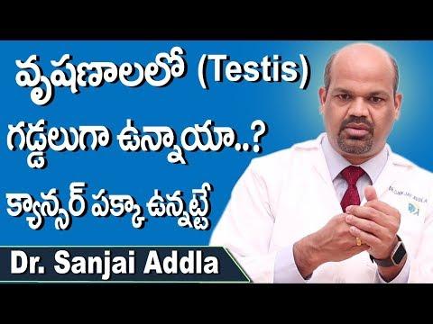 Symptoms Of Testicular Cancer Telugu | Lumps in Testis | Health Tips Dr Sanjai Addla | Doctors Tv