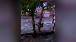 New footage emerges of tsunami striking Indonesian coast