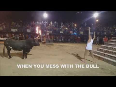 WHEN YOU MESS WITH THE BULL......