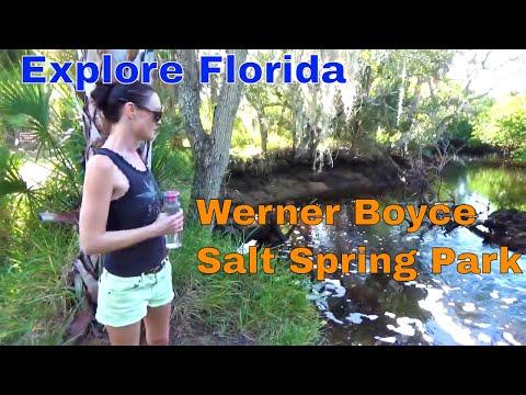 Tropical Excursion Werner Boyce Salt Spring State Park || Explore Florida