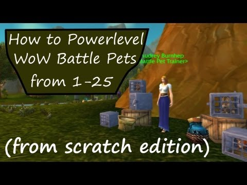 How to Powerlevel Your First WoW Pet Battle Team (from scratch)