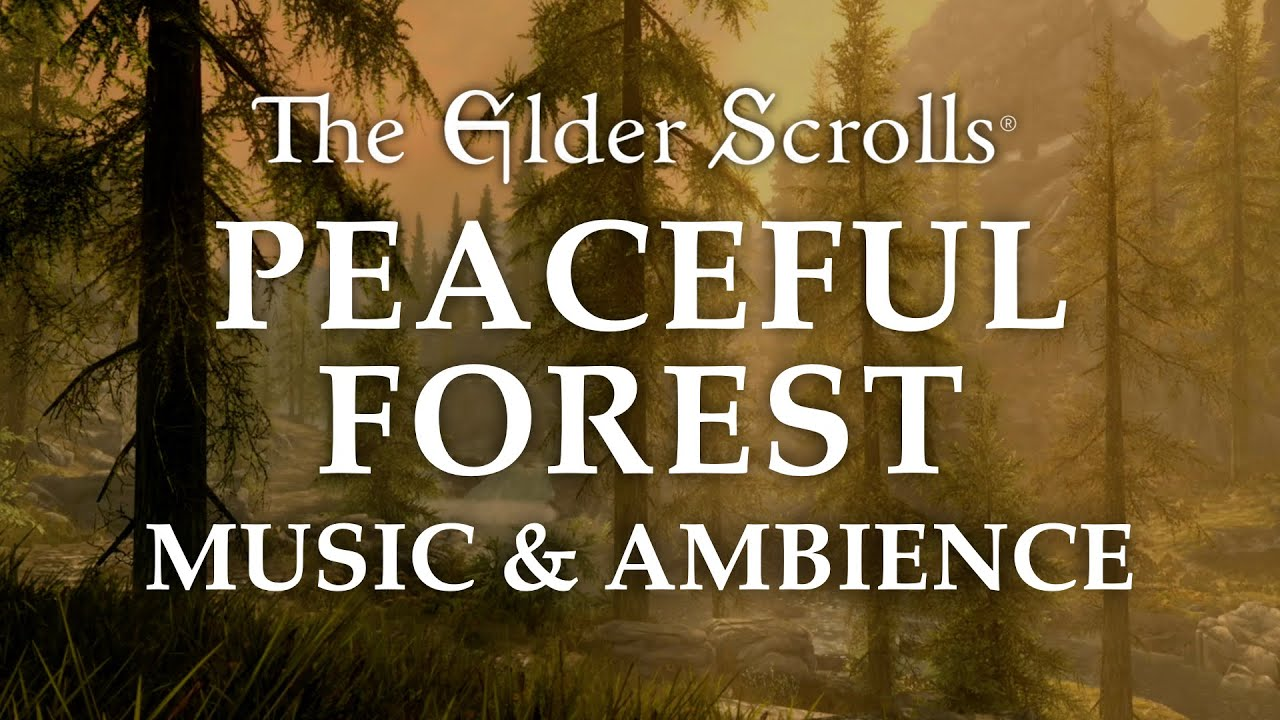 The Elder Scrolls Music & Ambience | Peaceful Forest, 5 Beautiful Scenes with Calm Music Mix, 6 Hrs