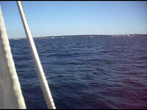 Trish sailing Vega