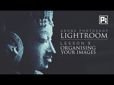 Using Collections in Lightroom to Organize Images | Lightroom Tutorials For Beginners #3