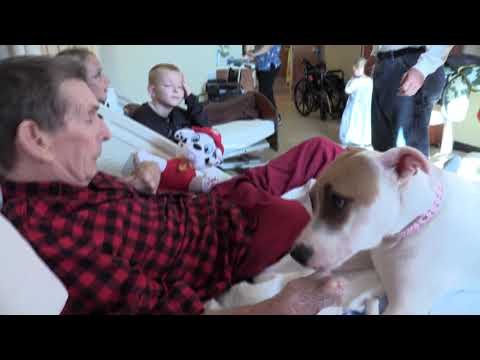 TV19 MIA WV Veterans Nursing Facility Therapy Dog