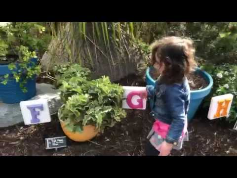 Kids Love The San Diego Botanic Garden