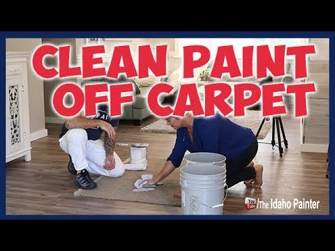 Quick Tips To Clean Paint Off Carpet.  CLEANING UP PAINT SPILLS