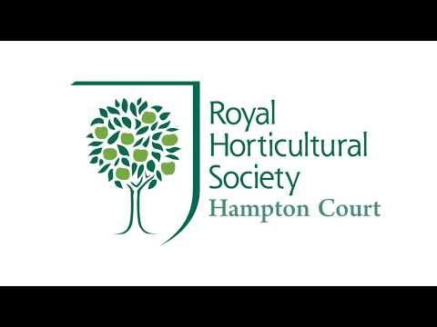 RHS Hampton Court - Flower Show 2016 - Any Pond Limited
