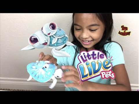 Little Live Pets Lil' Turtle & Baby Tank Unboxing | Toys Academy