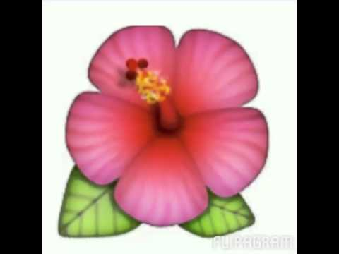 Pink emojis flipagram