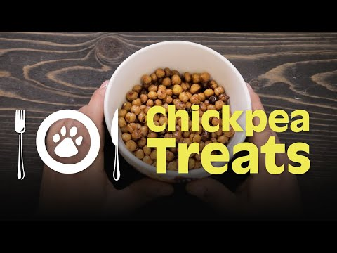 The Dog Chef:  Roasted Chick Pea Training Treats