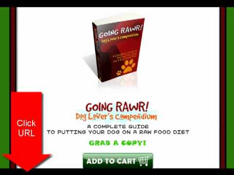 @@@ $$$$ how to get my dog to lose weight