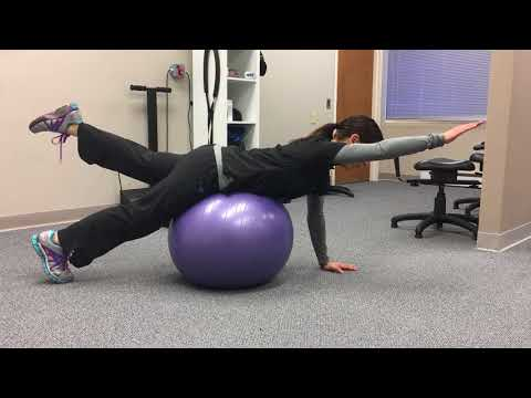 Spine and Posture Exercises to improve your posture and spinal health.