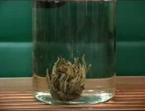 Beautiful Jasmine flower Tea