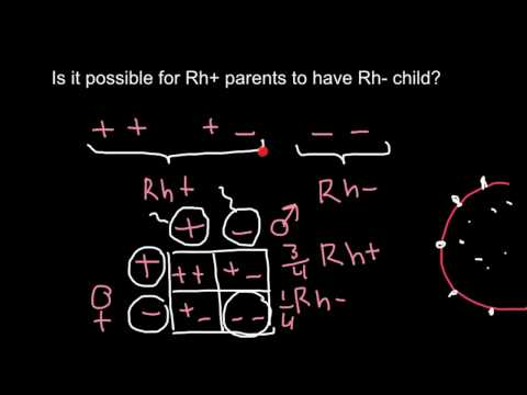 Is it possible or not for Rh+ parents to have Rh- child?