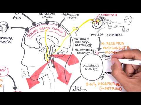Pharmacology - Antiemetics