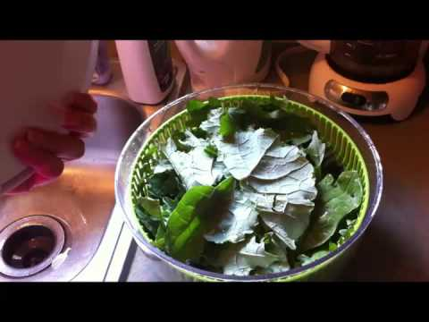 Dehydrating Kale in the Oven