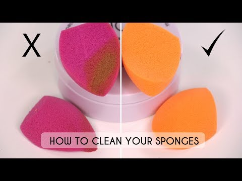 How To Clean Makeup Sponges - Are You Doing It Right? | Shonagh Scott