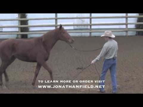 Helping a Herd Bound Horse with Jonathan Field