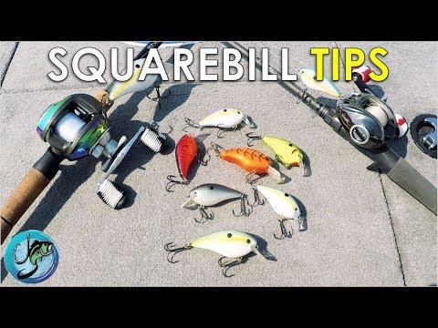 Squarebill Crankbaits: Everything You Need To Know | Tackle Tuesday