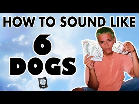 How to Sound Like 6 DOGS -